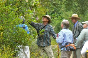 Private Herb Walk - Ojai
