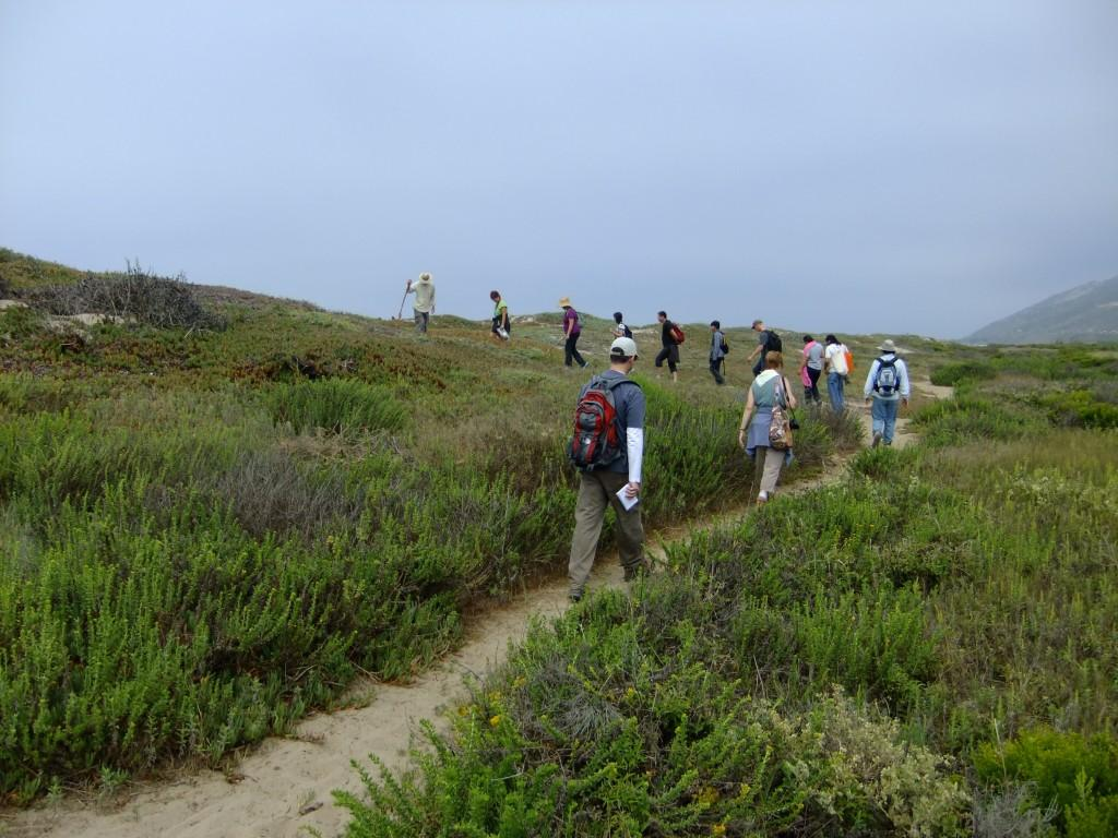 Herb Walking on the Ocean's Edge Trail: July 14, 2013 (Photo by Amy Herron)