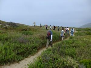 Seaside Wilderness Park Herb Walk @ Seaside Wilderness Park, Ventura