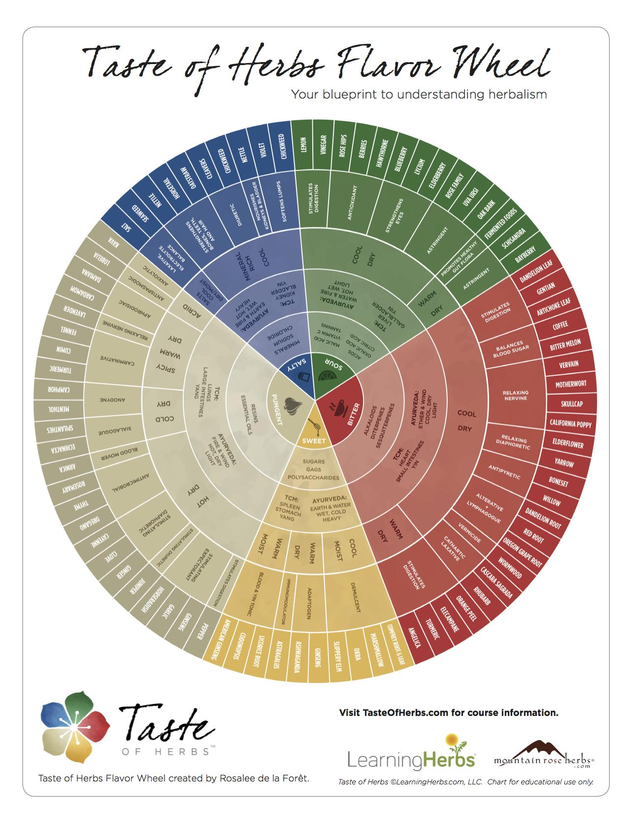 Taste-Of-Herbs-Flavor-Wheel