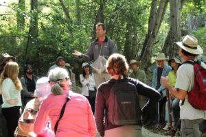 Medicinal Plant Walk with Dr. James Adams of USC School of Pharmacy @ West Sulphur Mountain Trail | Ventura | California | United States