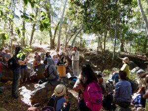 Summer Medicinal Plant Workshop with Dr. James Adams of USC School of Pharmacy @ Cluff Vista Park | Ojai | California | United States