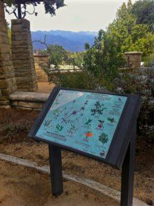 Drought Tolerant Native Plant Walk in Honor of Tomas Bostrom @ Cluff Vista Park | Ojai | California | United States