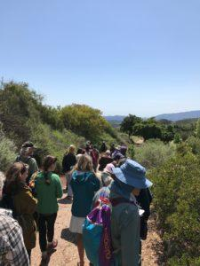 Ojai Herb Walk at Private Ranch @ Meet for carpool to private ranch in the Ojai mountains  | Ojai | California | United States