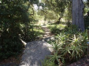 Health Classic Herb Walk and Slideshow Talk @ La Casa De Maria Retreat Center | Montecito | California | United States