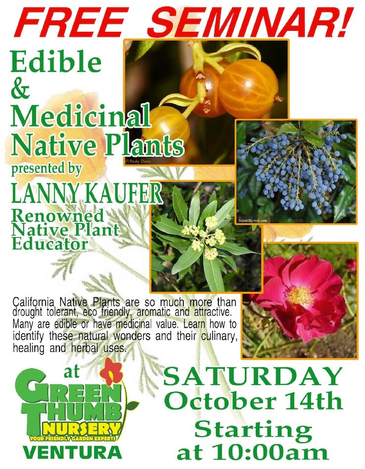 Join Me At Green Thumb Nursery In Ventura For A Free Seminar On Edible And Medicinal Plants Southern California Gardens