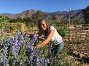 Earth Island Medicinal Herb Garden with Carol Wade @ Earth Island Medicinal Herb Garden | Ojai | California | United States
