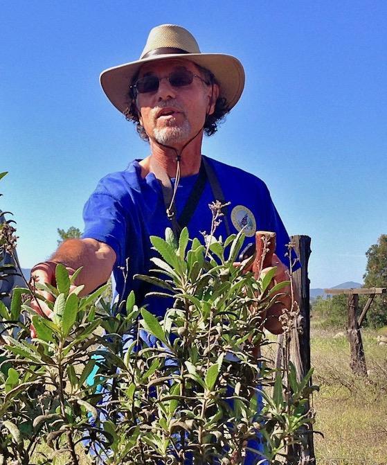 Earth Day Herb Walk on Ventura River Preserve
