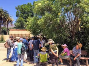 Summer Medicinal Plant Workshop with Professor James Adams of USC School of Pharmacy @ Downtown parking lot  | Ojai | California | United States