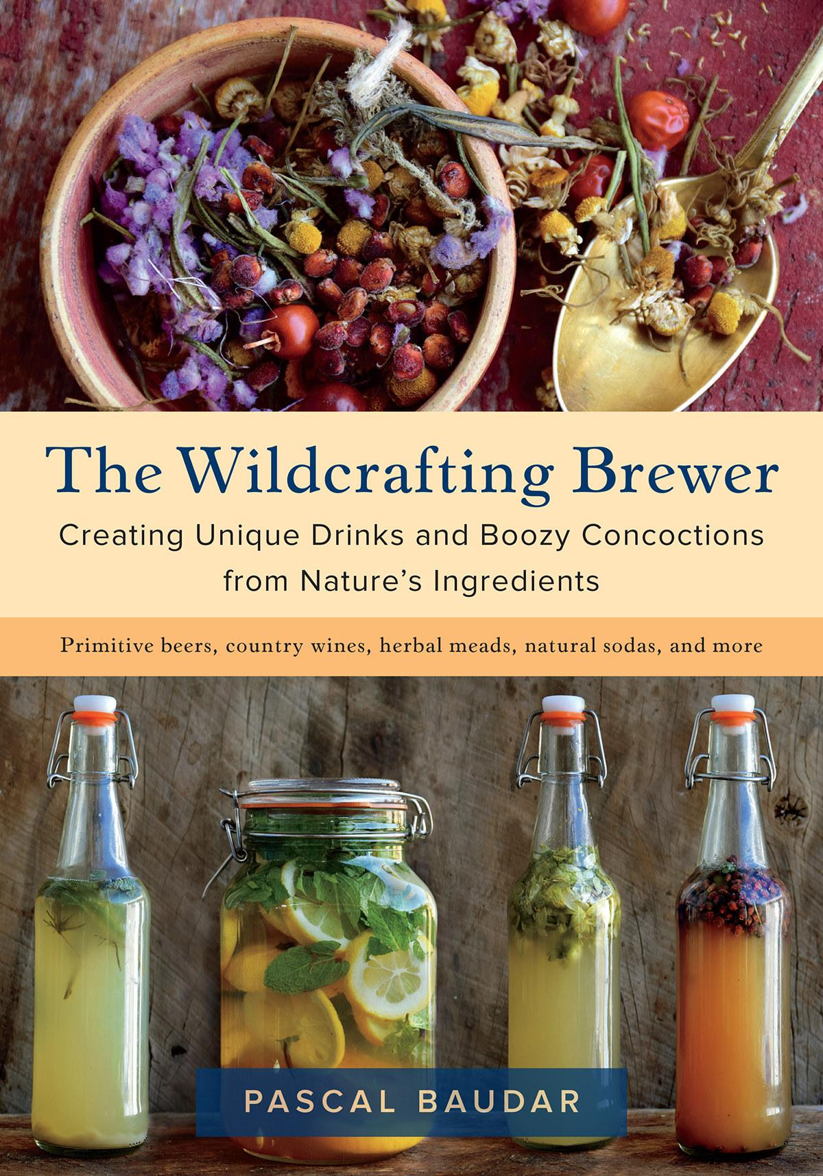 Brewing Wild Beers with Local Plants: A Workshop with Pascal Baudar