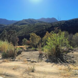 Memorial Day Nature Hike in Matilija Canyon @ Maricopa Plaza parking lot for carpool  | Ojai | California | United States