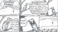 Condor Comix #1.jpg