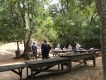 Lunch stop in the picnic area
